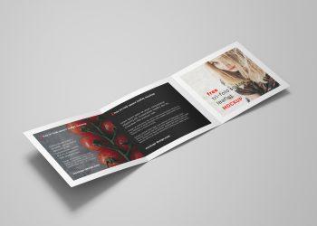 Square Tri-Fold Brochure Mockup PSD