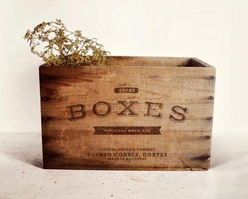 Vintage Boxes Logo Mockup