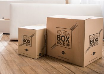 Corrugated Carton Packaging Box Mock-Up