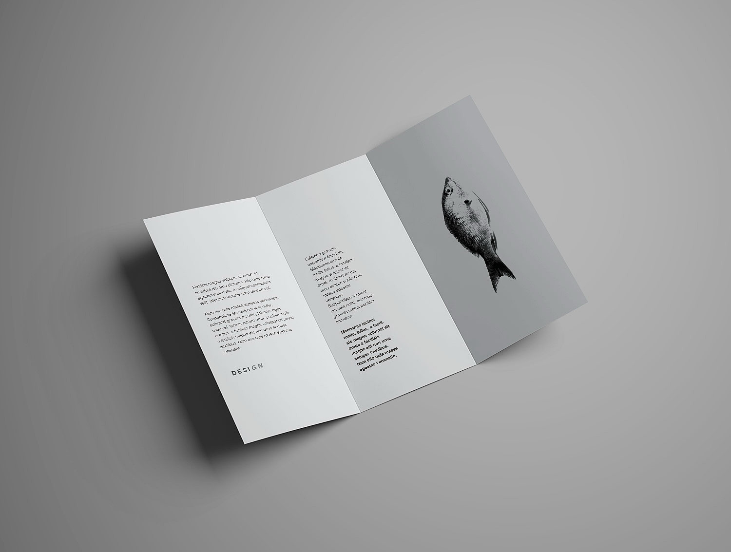 Advanced Trifold Brochure Mockup (7 angles)