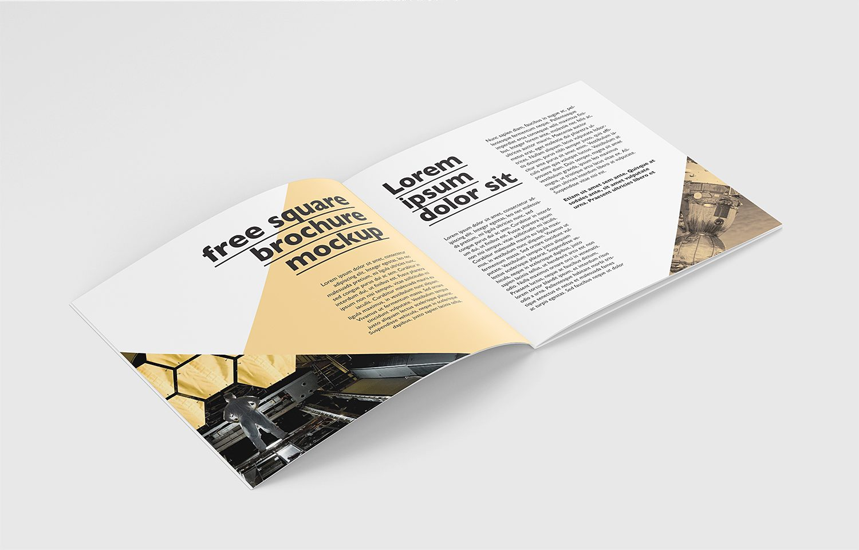 Free PSD Square Brochure Mockup