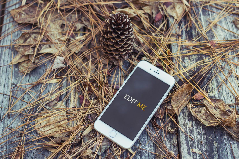 Autumn Style iPhone Mockup