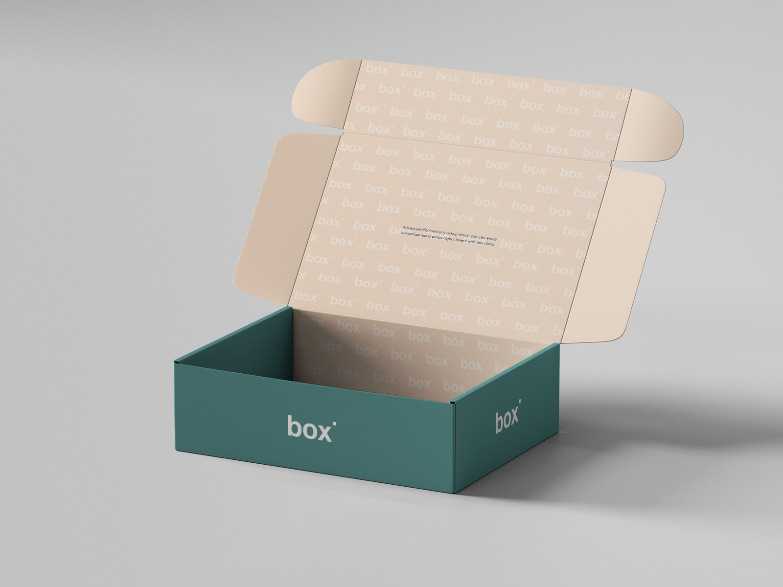 Free Pinch Lock Box Mockup PSD