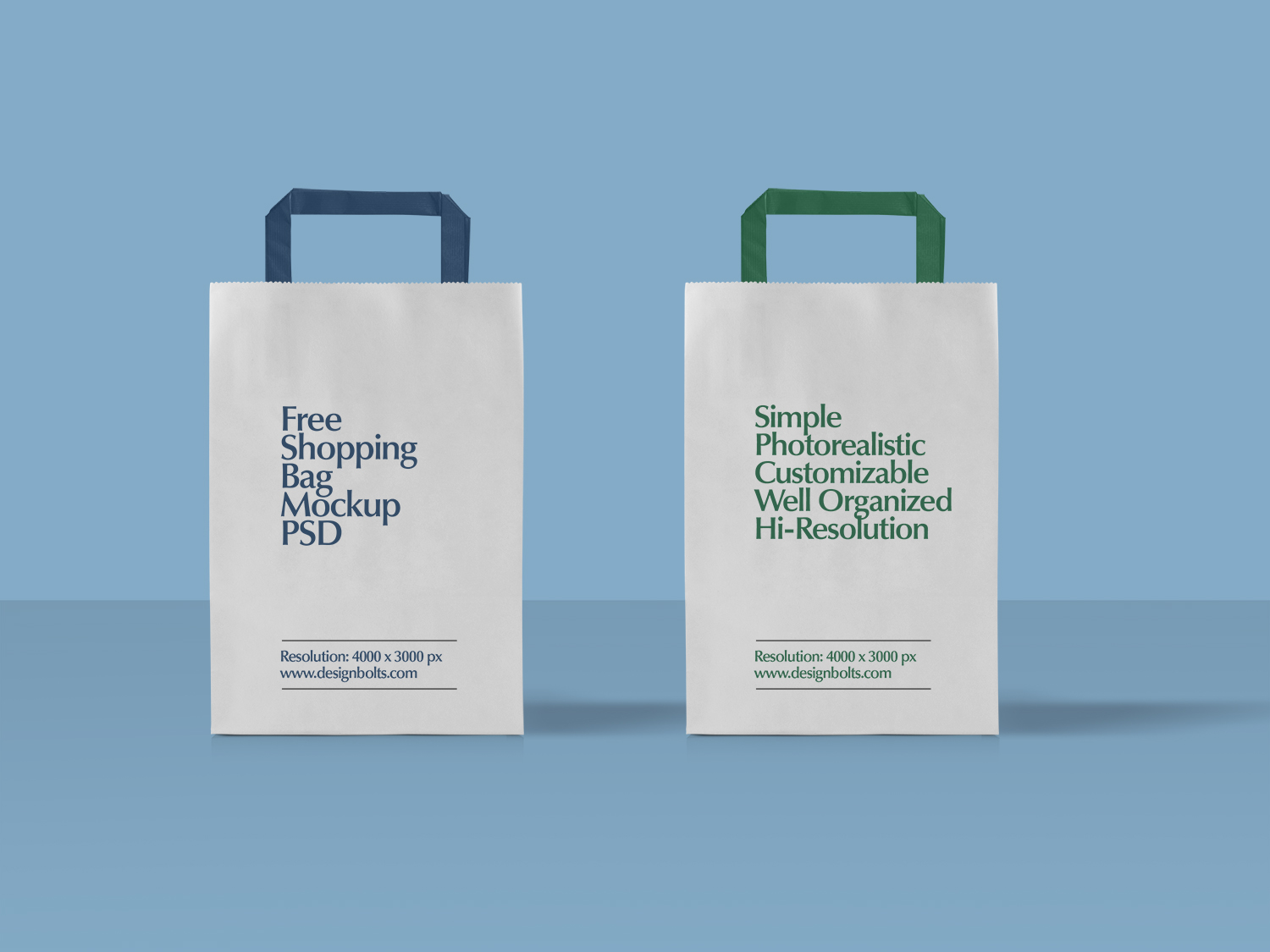 Paper Shopping Bag Packaging Mockup #2