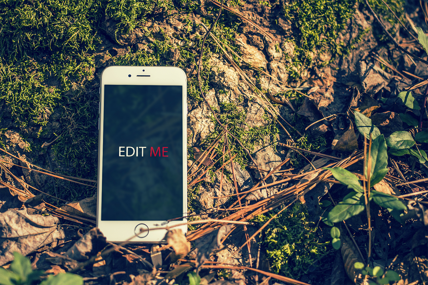 Outdoor iPhone Mockup PSD