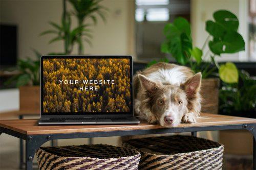 MacBook with Dog Mockup