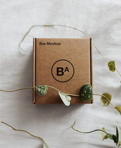 Craft Paper Box Mockup