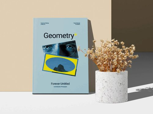 A4 Magazine Cover Free Mockup with a Dry Plant
